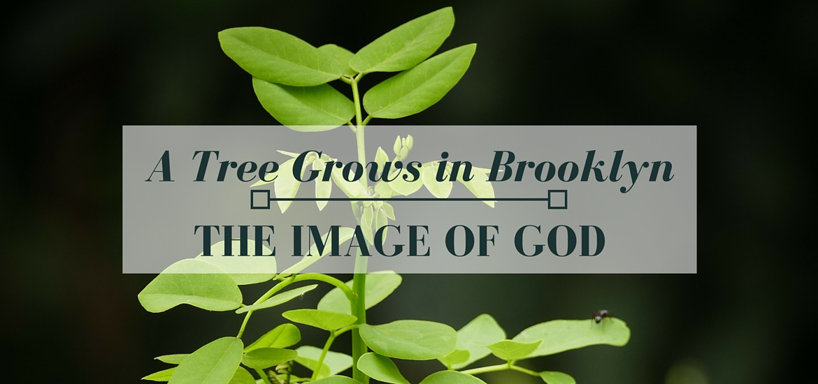 "Finding the Image of God in ""A Tree Grows in Brooklyn"" - read on Literate Theology / Kate Rae Davis"