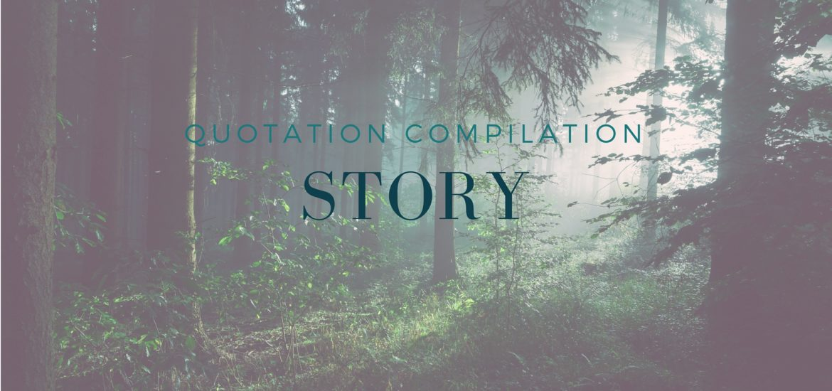 A compilation of quotations on story - read on KateRaeDavis.com; story quotes